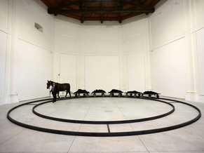 Preview picture exhibit JANNIS KOUNELLIS-Centri Arti Visive Pescheria di Pesaro